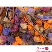 Trento Rose rózsaszín, narancssárga, halványlila, tevebarna