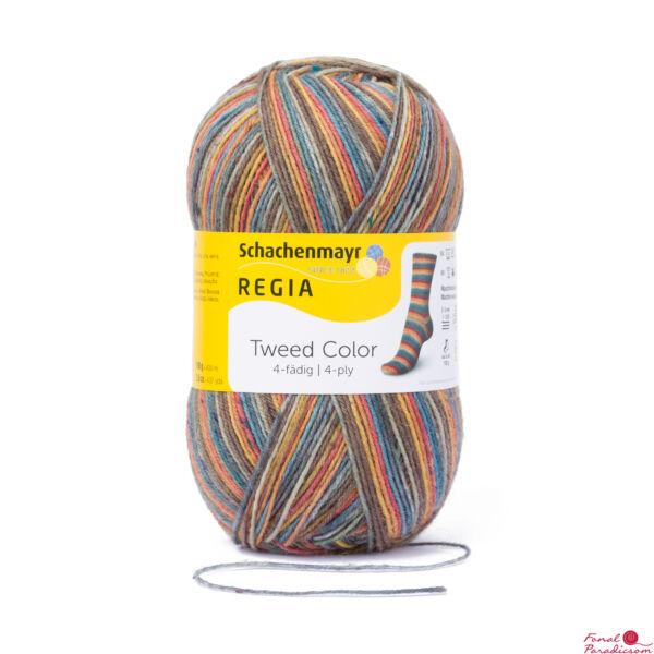Regia Tweed Color 4F 07491