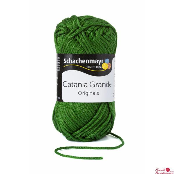 Catania Grande Oliva 03392
